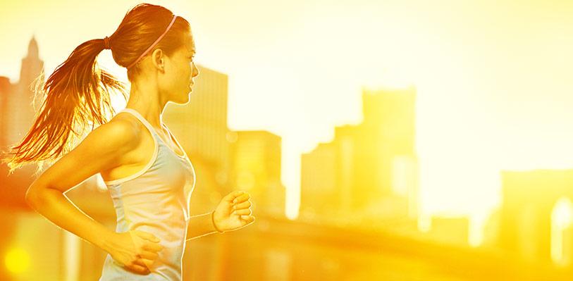 Allt du behöver för din hälsa och träning hos MM Sports